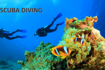 7 BEST PLACES FOR SCUBA DIVING & SNORKELING IN VIET NAM